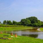Netherlands 5