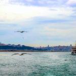 Turkey 27