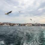 Turkey 29